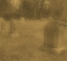 """'""""THE CEMETERY, a Series', No. 7, Three Little Lambs at Dusk""""... prints and products by © Bob Hall"""