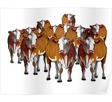 Crowd of Cows: Original Art, Cattle, Livestock Poster