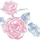 Pink and blue roses colored ink sketch  by Sarah Trett
