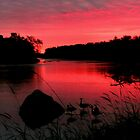 Early Morn on the Assiniboine by Larry Trupp