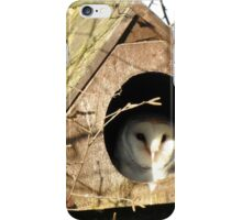 Barn Owl at Home iPhone Case/Skin