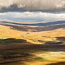 Ribbleheaad Viaduct by David Lewins