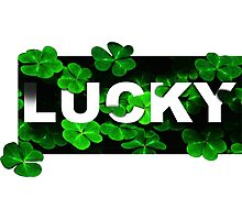Lucky Clovers Photographic Print