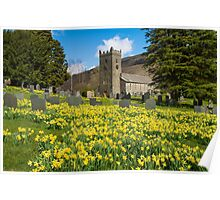 Troutbeck Daffodils Poster