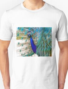 Peacock Close Up Unisex T-Shirt