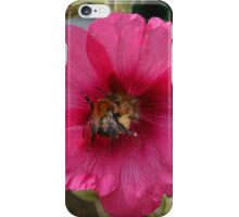 Collection Point Bee iPhone Case/Skin