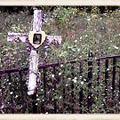 "'""THE CEMETERY, a Series', No. 11, Over the Fence""... prints and products by © Bob Hall"
