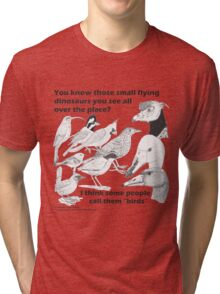Those small flying dinosaurs Tri-blend T-Shirt
