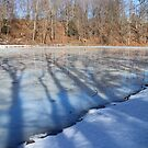 Shadows On Ice by Jack Ryan