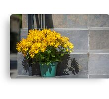 Pot of Gold on Steps Metal Print