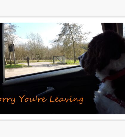 Virgil is Sorry You're Leaving Sticker
