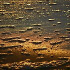 Dawn Water 'Whitewash' by salsbells69