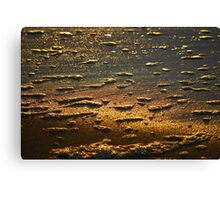 Dawn Water 'Whitewash' Canvas Print