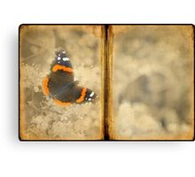 Red Admiral with Book Texture Canvas Print