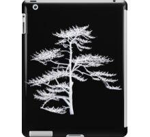 Flash of Light iPad Case/Skin