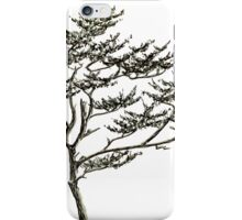 Freehand Pine iPhone Case/Skin