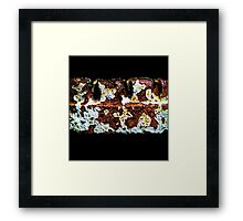 Great Decay Framed Print