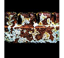 Great Decay Photographic Print