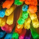 Rainbow of Pipe Cleaners by Randy Turnbow