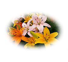 Spring Lilies ~ Ready for Planting Photographic Print