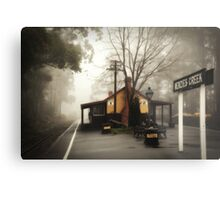 Misty Menzies Creek Metal Print