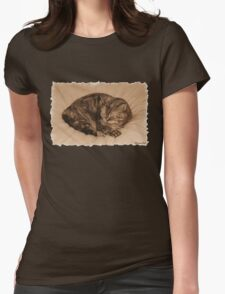 Little Cat Takes a Little Cat Nap Womens Fitted T-Shirt