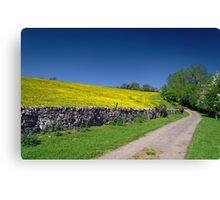 The Limestone Way, near Thorpe Canvas Print