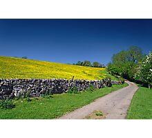 The Limestone Way, near Thorpe Photographic Print