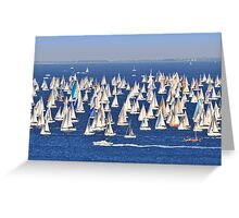 Regatta - Barcolana  Greeting Card