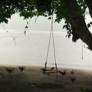 chooks on the beach by wellman