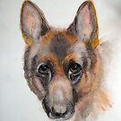 My friends German Shepherd by Heidi Mooney-Hill