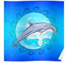 Maori Sun Dolphin Poster