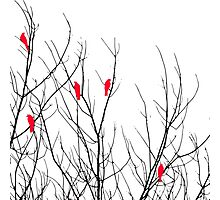 Artistic Bright Red Birds on Tree Branches Photographic Print