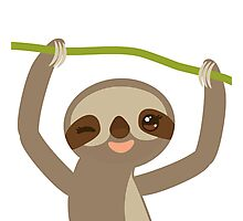 Winking sloth Photographic Print