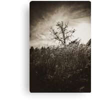 there are stories never told Canvas Print
