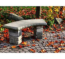 The Stone Bench Photographic Print