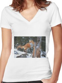 Red Fox On Stump Women's Fitted V-Neck T-Shirt