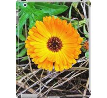 beauty in the brush iPad Case/Skin