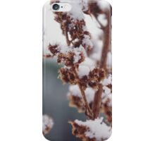 Frosted Flora iPhone Case/Skin