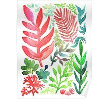 Red Corals & Laurels Poster