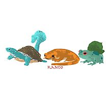 Kanto Region Pokemon Photographic Print