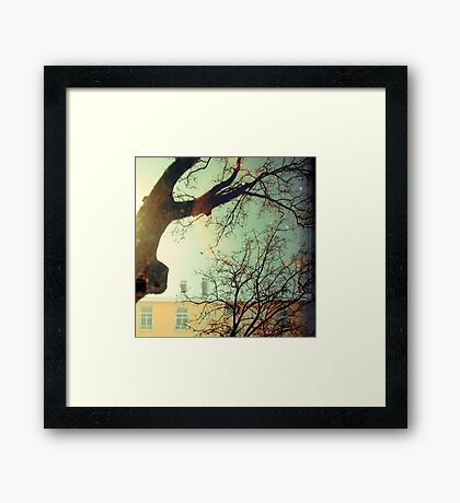 winter trees and apartments Framed Print