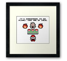 Zelda Pokemon Framed Print