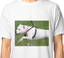 Minnie the Staffy does Agility Classic T-Shirt