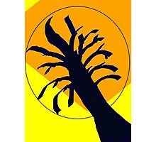 Yellow Ochre Sun Tree Photographic Print