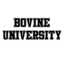 Bovine University – Ralph Wiggum, The Simpsons Photographic Print