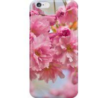 Sakura cherry-blossoms iPhone Case/Skin