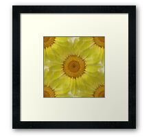 Sunny Day Daisy Floral Abstract Framed Print