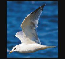 Gull Flying Kids Tee