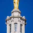 Wisconsin - atop the Capitol, Madison  by Steven Ralser